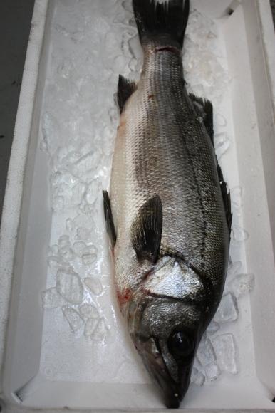 1月の美味しいお魚たち_b0193555_01303869.jpg