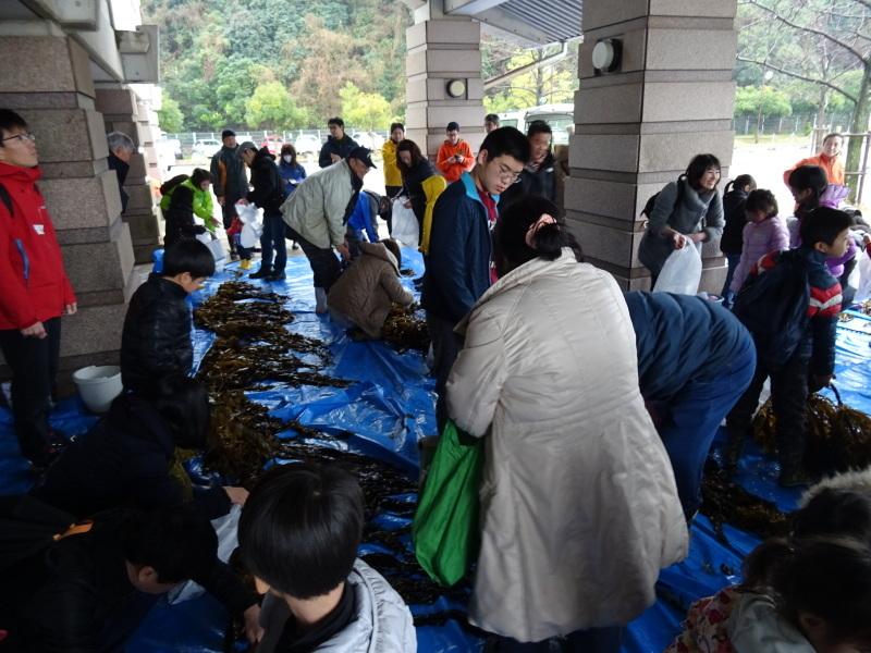 『みんなでワカメを育てよう:収穫祭』・・・せんなん里海公園_c0108460_20490593.jpg