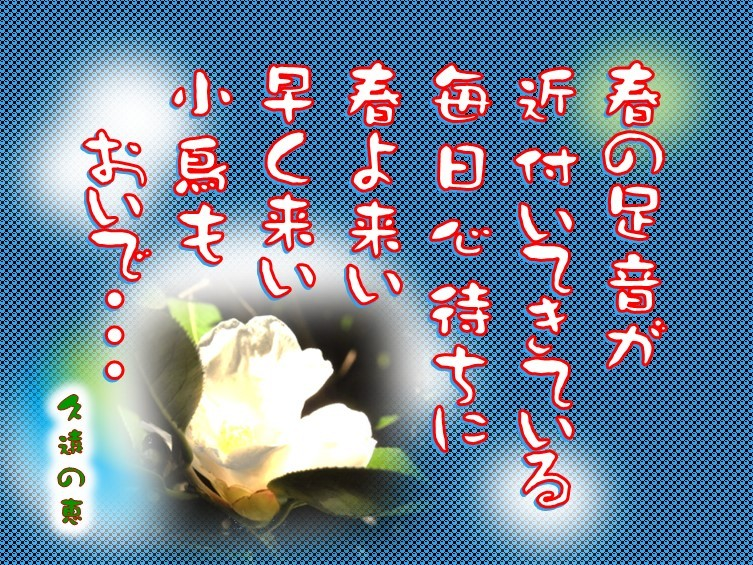 f0214467_09453695.jpg