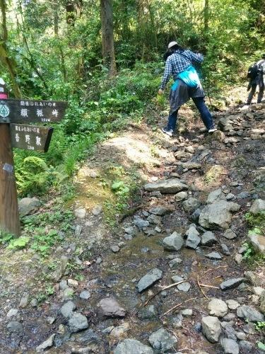山登り_e0123469_23392356.jpg