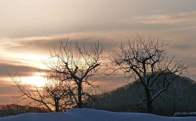 雪景色・・2_d0162994_9344011.jpg