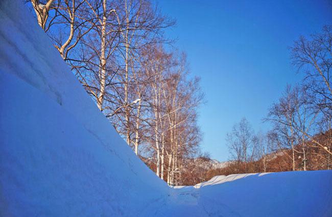雪景色・・2_d0162994_945416.jpg