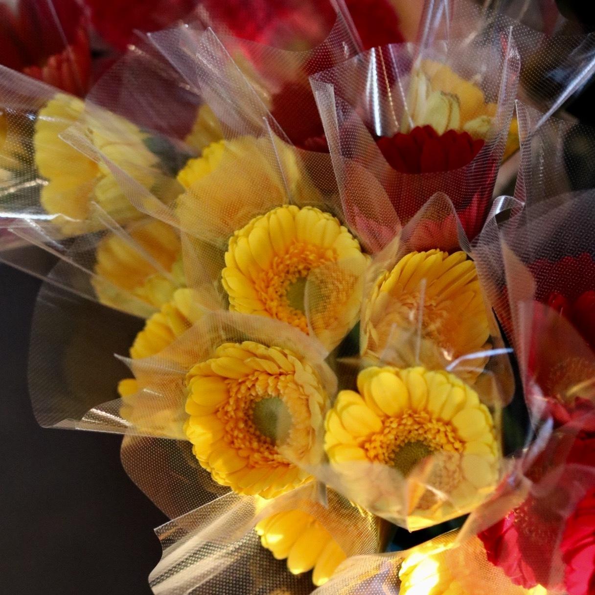 週末には、花屋に行こう!_c0366722_17545580.jpg