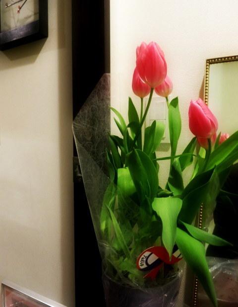 FLOWER FIELD Garden\'s * 感謝セール開催中♪ @追分_f0236260_00440898.jpg
