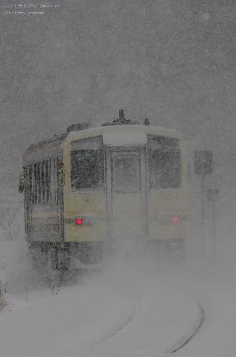 吹雪の中へと_d0309612_00130665.jpg
