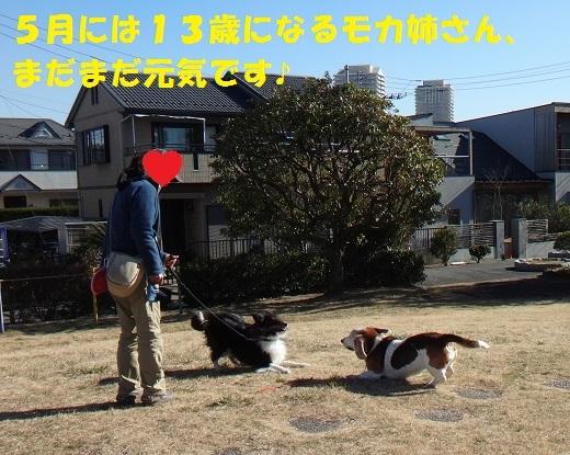f0121712_15201888.jpg
