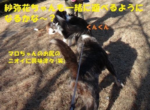 f0121712_15202426.jpg