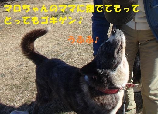 f0121712_15202841.jpg