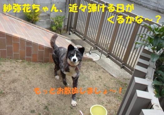f0121712_15203979.jpg