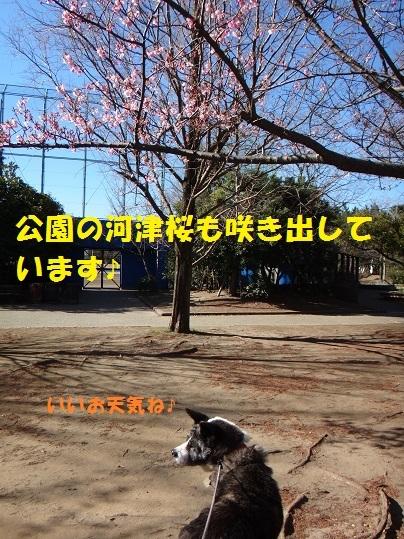 f0121712_15204616.jpg