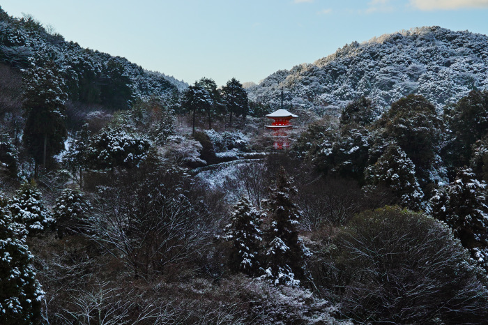 京都    1/16 清水寺  雪景色_f0021869_23403869.jpg