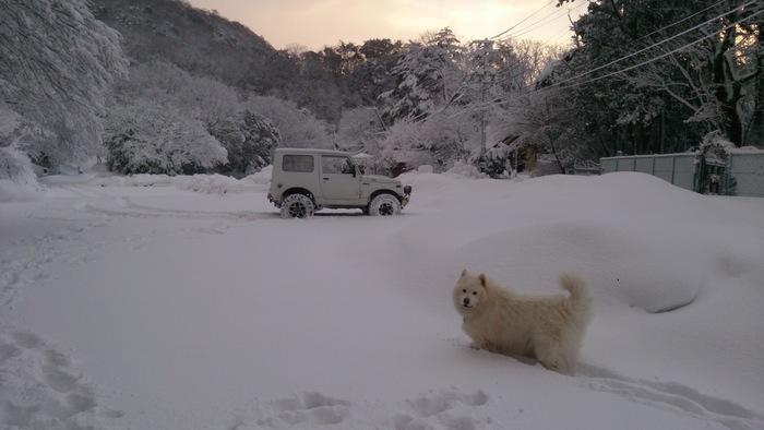 今日のお山散歩_a0049296_1864490.jpg