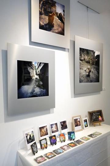 第8回 猫・ねこ写真展 Art Gallery 山手 横浜 ピンホール写真 Pinhole Photography_f0117059_21491931.jpg