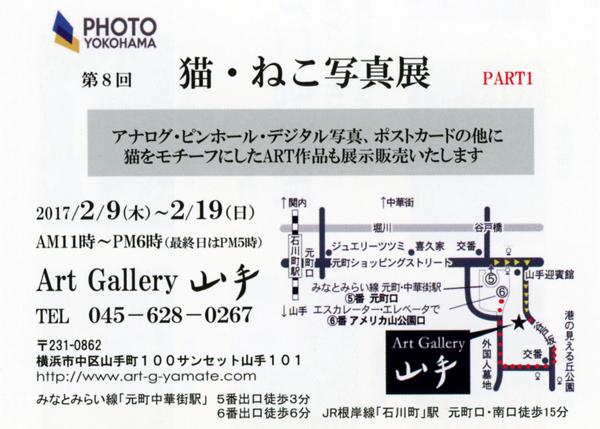 第8回 猫・ねこ写真展 Art Gallery 山手 横浜 ピンホール写真 Pinhole Photography_f0117059_21501218.jpg