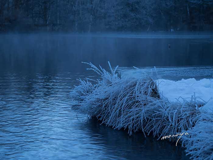冷え込んだ朝_c0085877_6202854.jpg