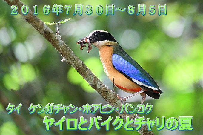 a0035279_22321803.jpg