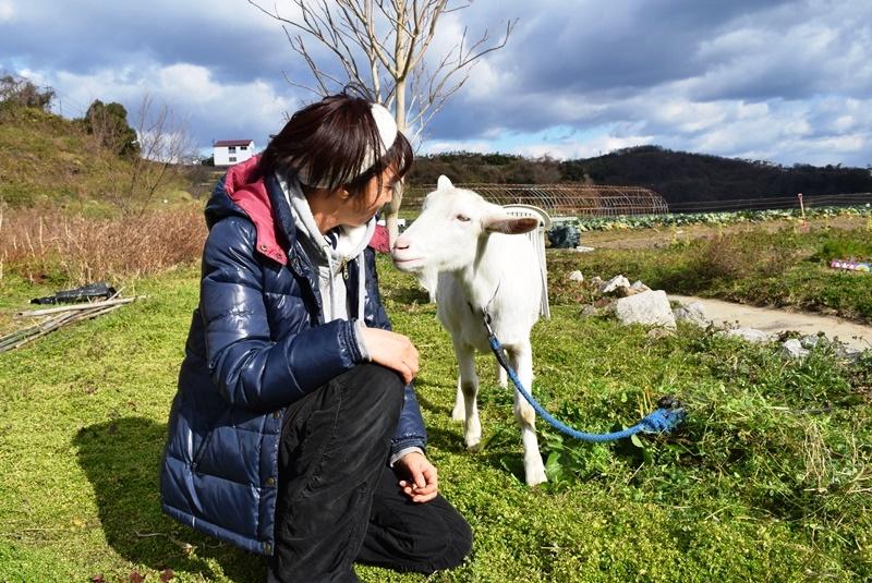 岡山県・牛窓で暮らす人たちとの優しい時間_b0053082_7532479.jpg