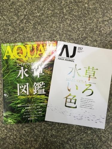 水草の森の新商品入荷!_c0165800_14123821.jpeg