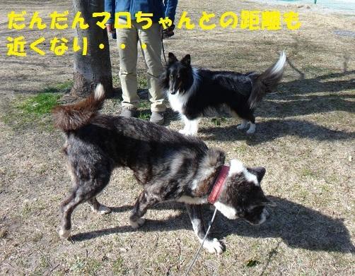 f0121712_15155300.jpg