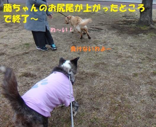 f0121712_16354032.jpg
