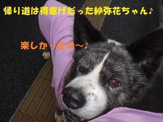 f0121712_16424761.jpg