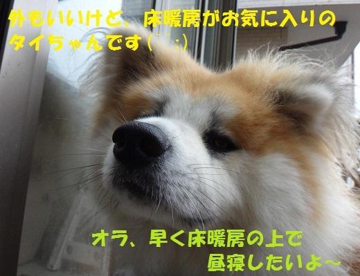 f0121712_17015814.jpg