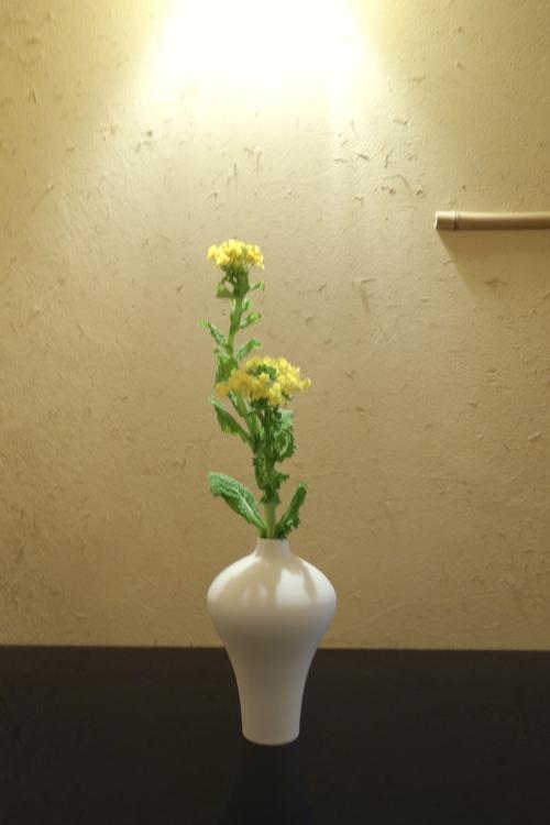 春は黄色の花からスタート_a0197730_115449.jpg