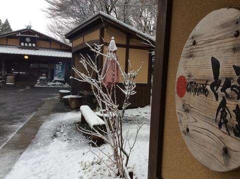 雪が降りました〜_f0006649_1111231.jpg