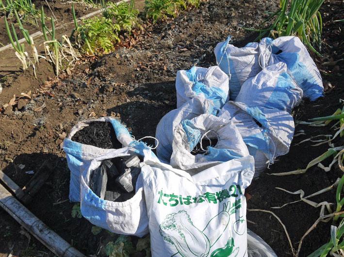 炭使い土づくり、ジャガイモの種芋植える準備完了2・8_c0014967_1885463.jpg