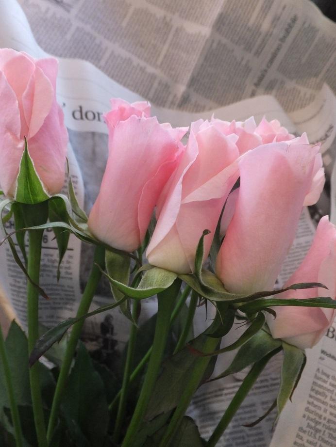 オークリーフ(春の花木)_f0049672_13483237.jpg
