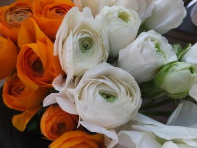 オークリーフ(春の花木)_f0049672_13485324.jpg