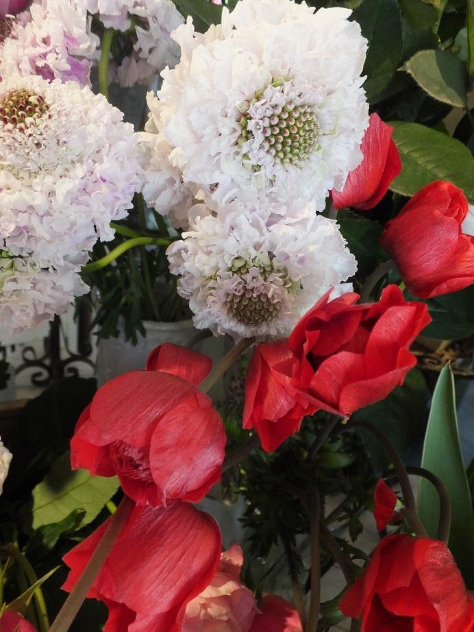 オークリーフ(春の花木)_f0049672_13494991.jpg