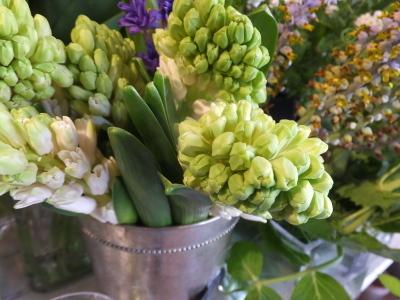 オークリーフ(春の花木)_f0049672_13500342.jpg