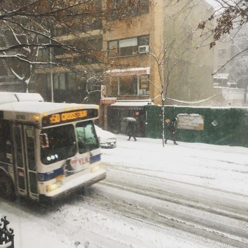 天気予報があたりNYはまさかの大雪_f0088456_08122014.jpg