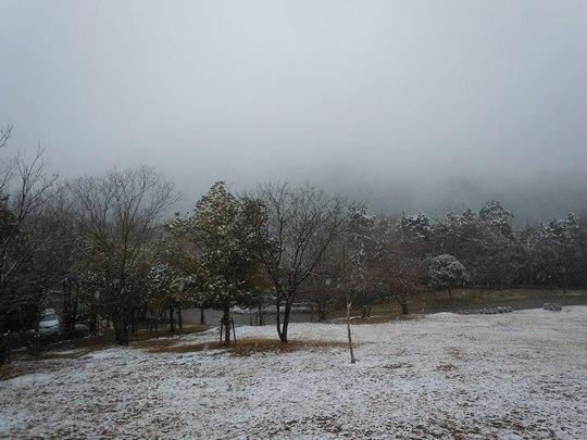 雪景色もまた ・・・_b0102572_11552549.jpg