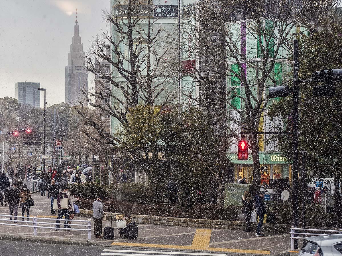 吹雪?  2月10日(金)5950_b0069507_4195110.jpg