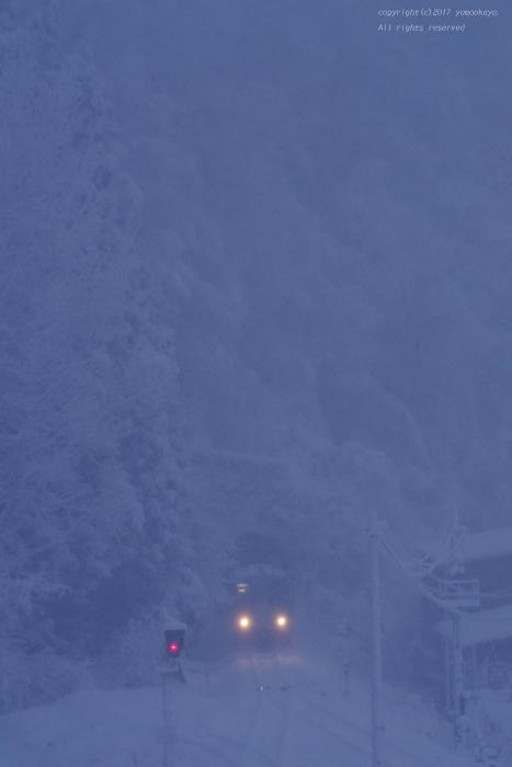 強い寒気が下りた朝に_d0309612_21313605.jpg