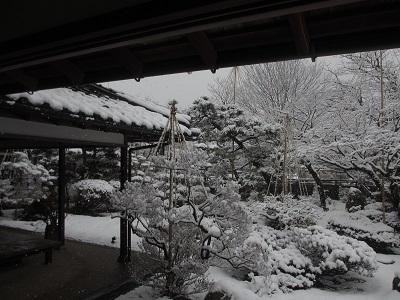 雪化粧①_f0289632_1801933.jpg