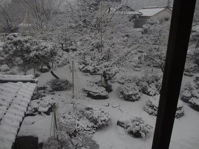 雪化粧①_f0289632_181720.jpg
