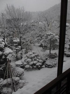 雪化粧①_f0289632_1822655.jpg