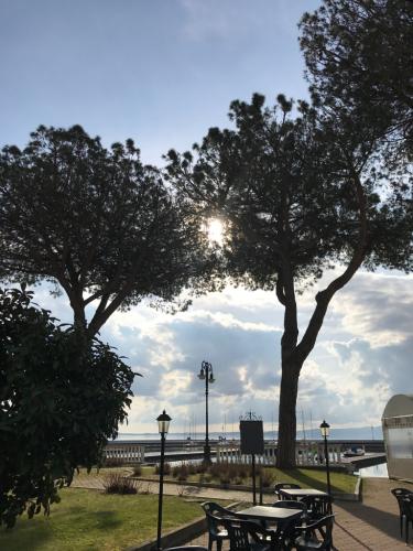 ボルセーナ湖 Lake Bolsena トラットリアPalomba美味しい!チヴィタ・ディ・バーニョレージョ おすすめ!イタリア珍道中2日目 オルヴィエート最後の夜!!!_f0355367_23182463.jpg