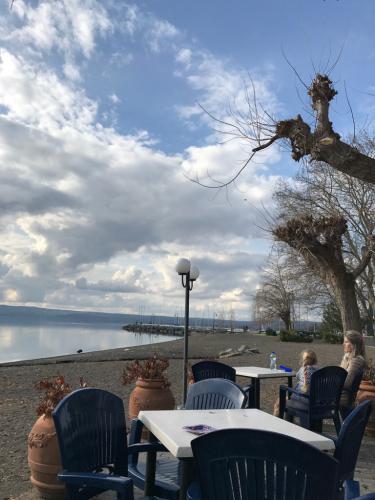 ボルセーナ湖 Lake Bolsena トラットリアPalomba美味しい!チヴィタ・ディ・バーニョレージョ おすすめ!イタリア珍道中2日目 オルヴィエート最後の夜!!!_f0355367_23182689.jpg