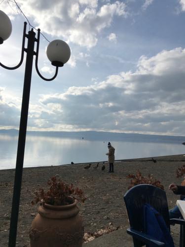 ボルセーナ湖 Lake Bolsena トラットリアPalomba美味しい!チヴィタ・ディ・バーニョレージョ おすすめ!イタリア珍道中2日目 オルヴィエート最後の夜!!!_f0355367_23182940.jpg