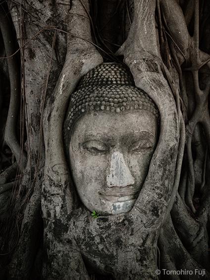 タイ、アユタヤ、ワット・プラ・マハタートにて_c0030685_20442339.jpg