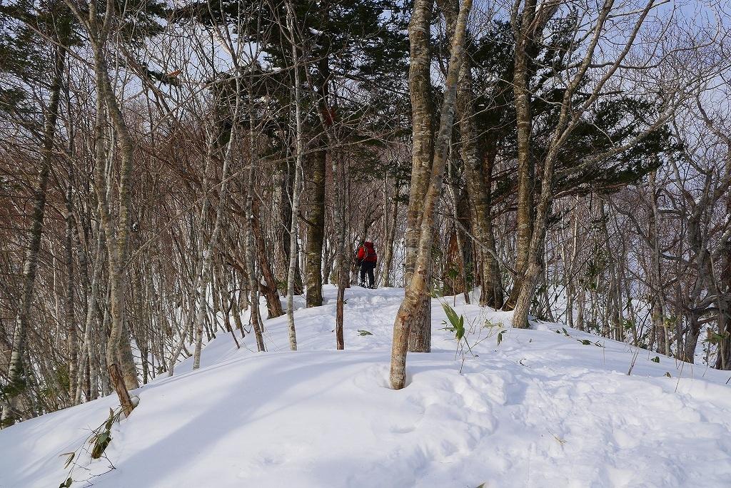 多峰古峰(たっぷこっぷ)山、2017.2.11_f0138096_17131250.jpg