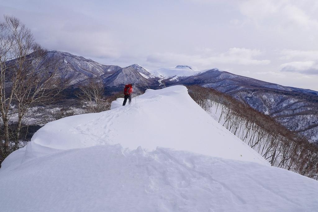 多峰古峰(たっぷこっぷ)山、2017.2.11_f0138096_17134118.jpg