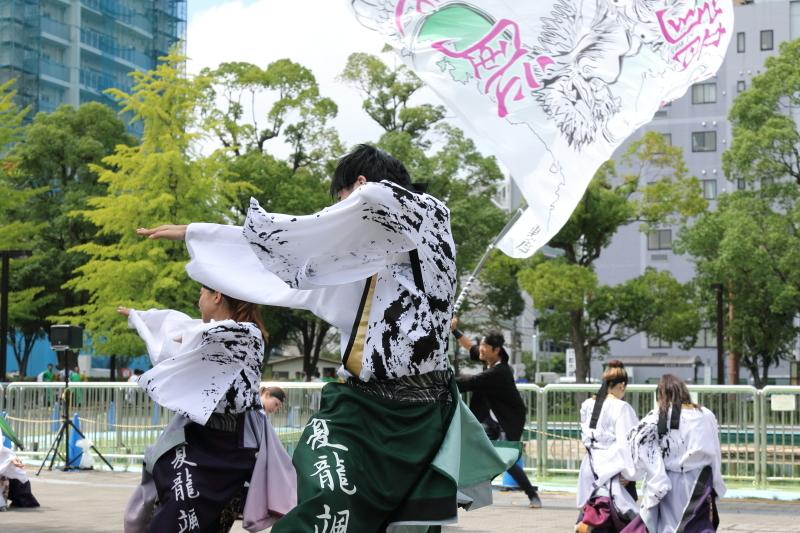 舞!颯爽と  夏龍颯爽2_b0224616_18260217.jpg