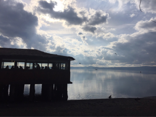 ボルセーナ湖 Lake Bolsena トラットリアPalomba美味しい!チヴィタ・ディ・バーニョレージョ おすすめ!イタリア珍道中2日目 オルヴィエート最後の夜!!!_f0355367_02400312.jpg