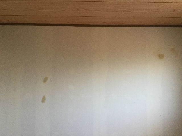 f0031037_20113917.jpg