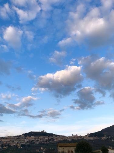 イタリア珍道中3日目!モンタルチーノ ワイナリーでうれしい再会!!!_f0355367_05081937.jpg